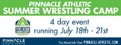 Pinnacle Wrestling Camp